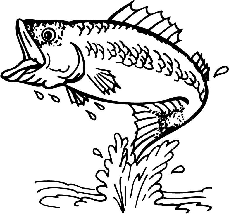 this is best bass fish outline 18252 free coloring pages