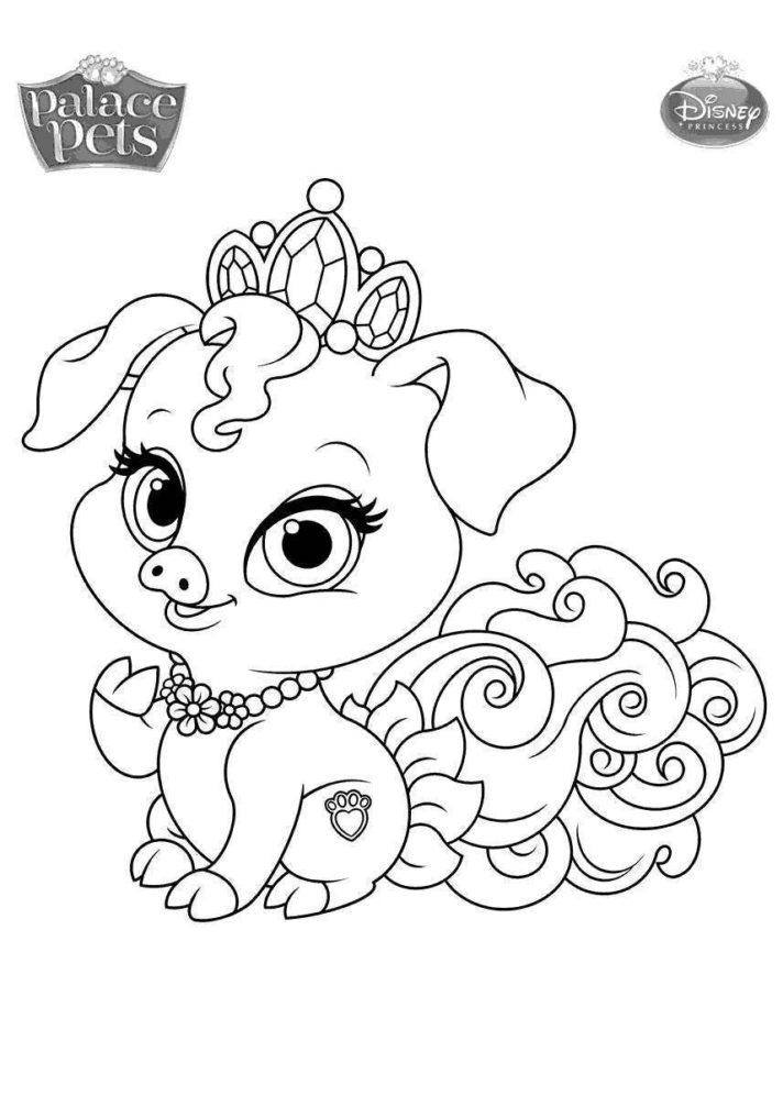 top 44 splendid palace pets coloring pages princess summer