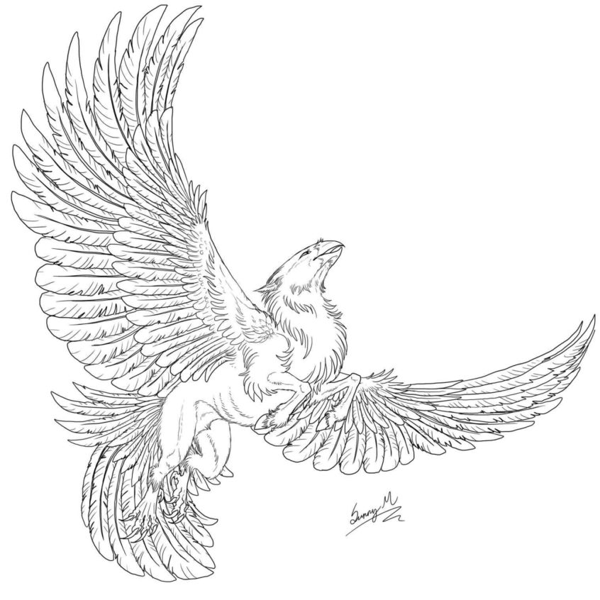top coloring pages hippogriff coloring at getdrawings free