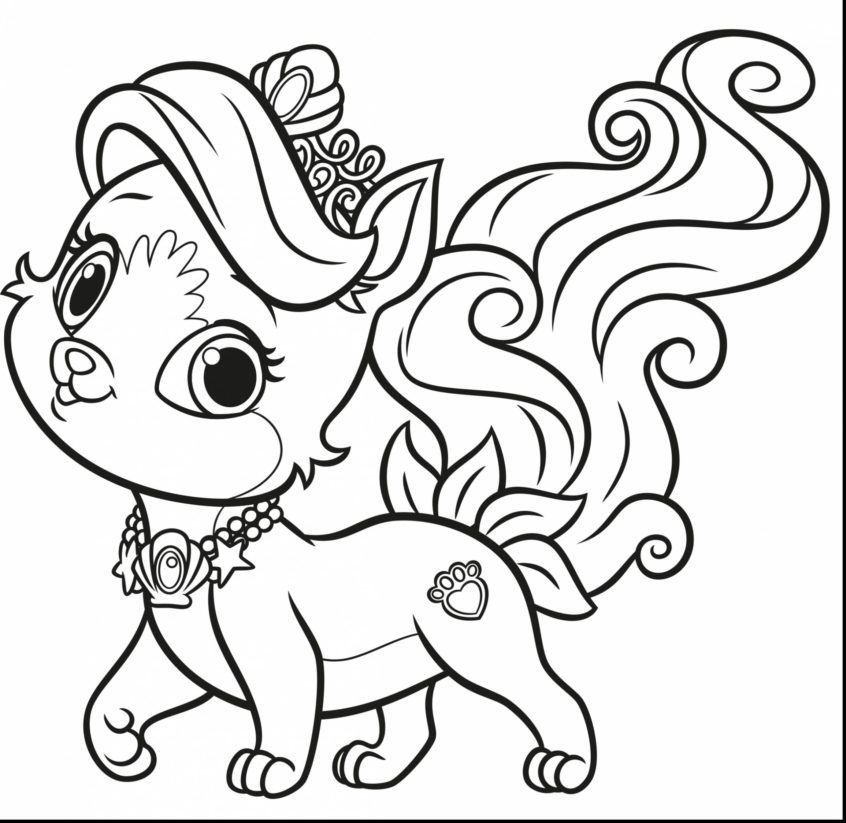 top coloring pages pomeranian puppy coloring at getdrawings