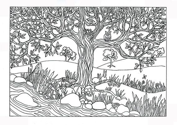 tree river nature scene coloring page coloring for