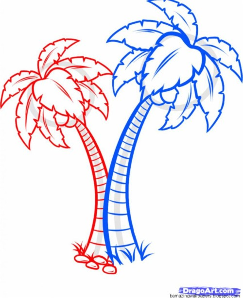 tropical rainforest plants drawings coloring pages
