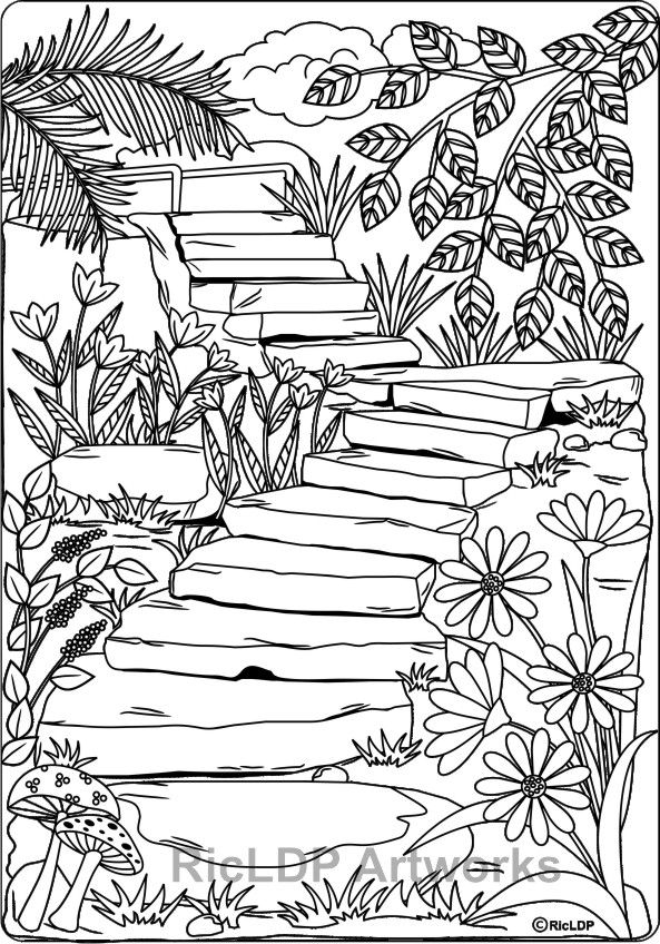twenty adult coloring pages coloring pages nature