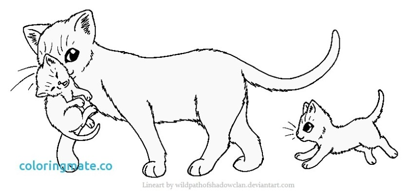 warrior cat coloring pages kits