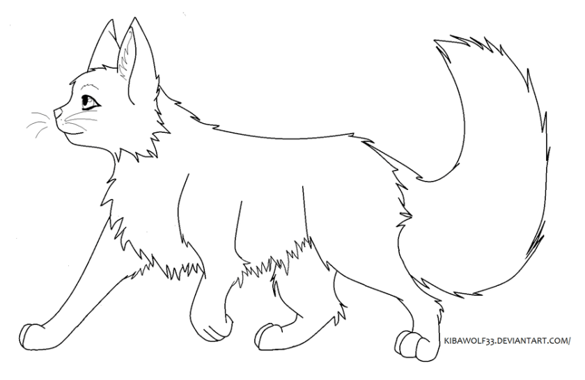 warrior cat couple coloring pages warriors cats drawing at