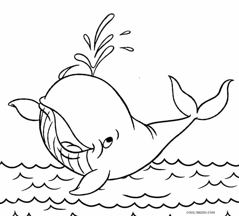 Whale Coloring Pages Gallery - Whitesbelfast.com