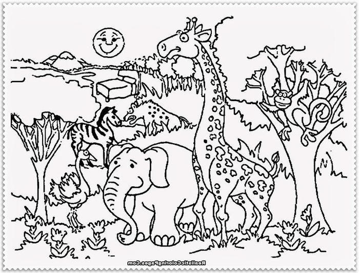 zoo coloring pages for toddlers fun for kids