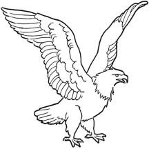 bald eagle netart