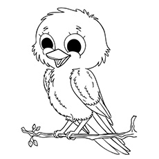 bird coloring pages free download on clipartmag
