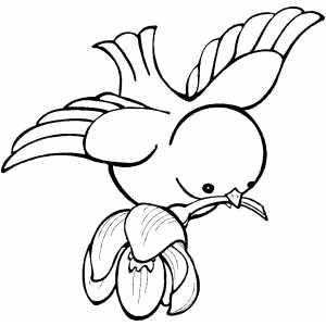 bird flying with flower on beak coloring sheet