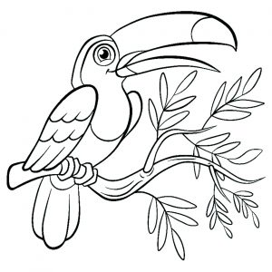 birds free printable coloring pages for kids