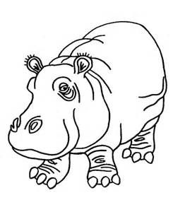 hippopotamus coloring pages sketch template animal