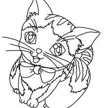 kitten coloring pages hellokids
