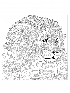 sea lion coloring pages for adults