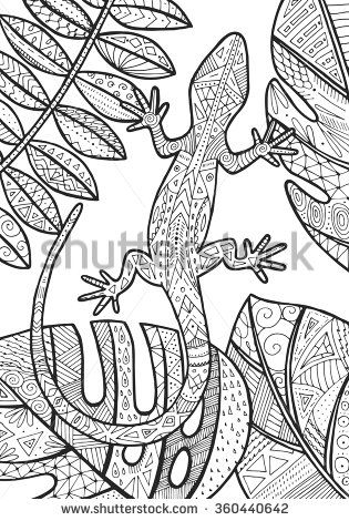 vector lizard tropical illustration for adult coloring
