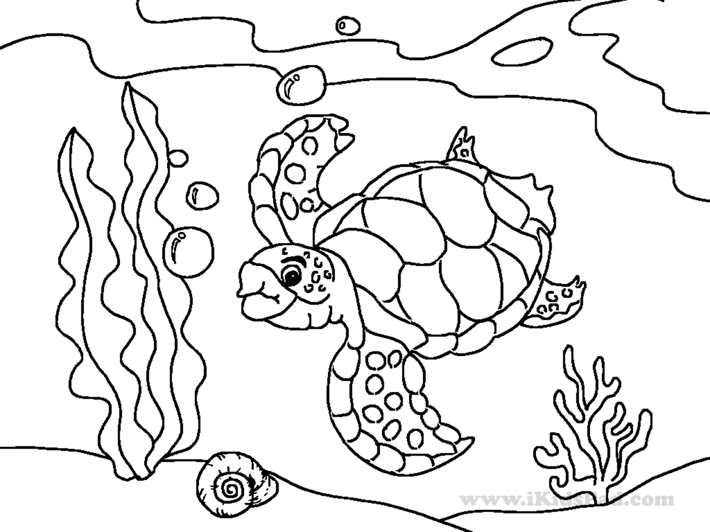 cute sea animals coloring pages getcoloringpages