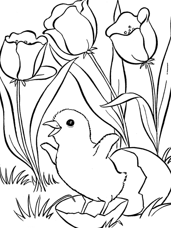 easter spring coloring pages holiday coloring pages