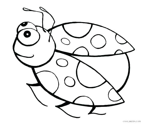 free bug coloring pages at getcolorings free