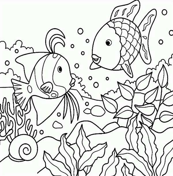 free rainbow fish sea animals coloring page download