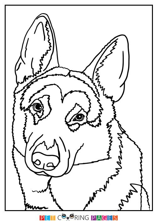 german shepherd dog coloring page german shepherd colors