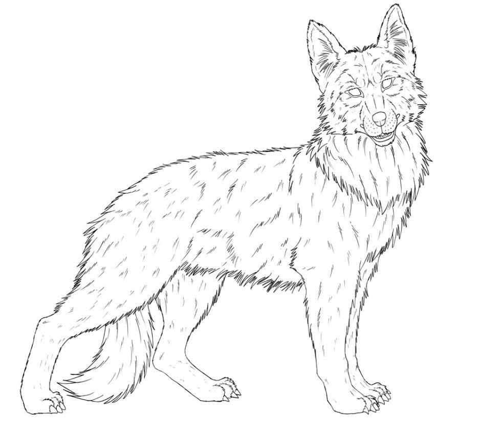 german shepherd dog drawing at getdrawings free download