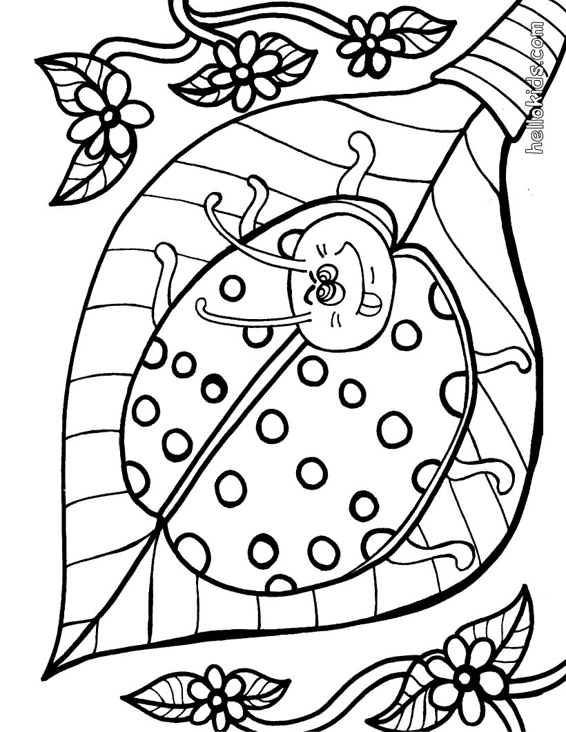 ladybug coloring pages hellokids