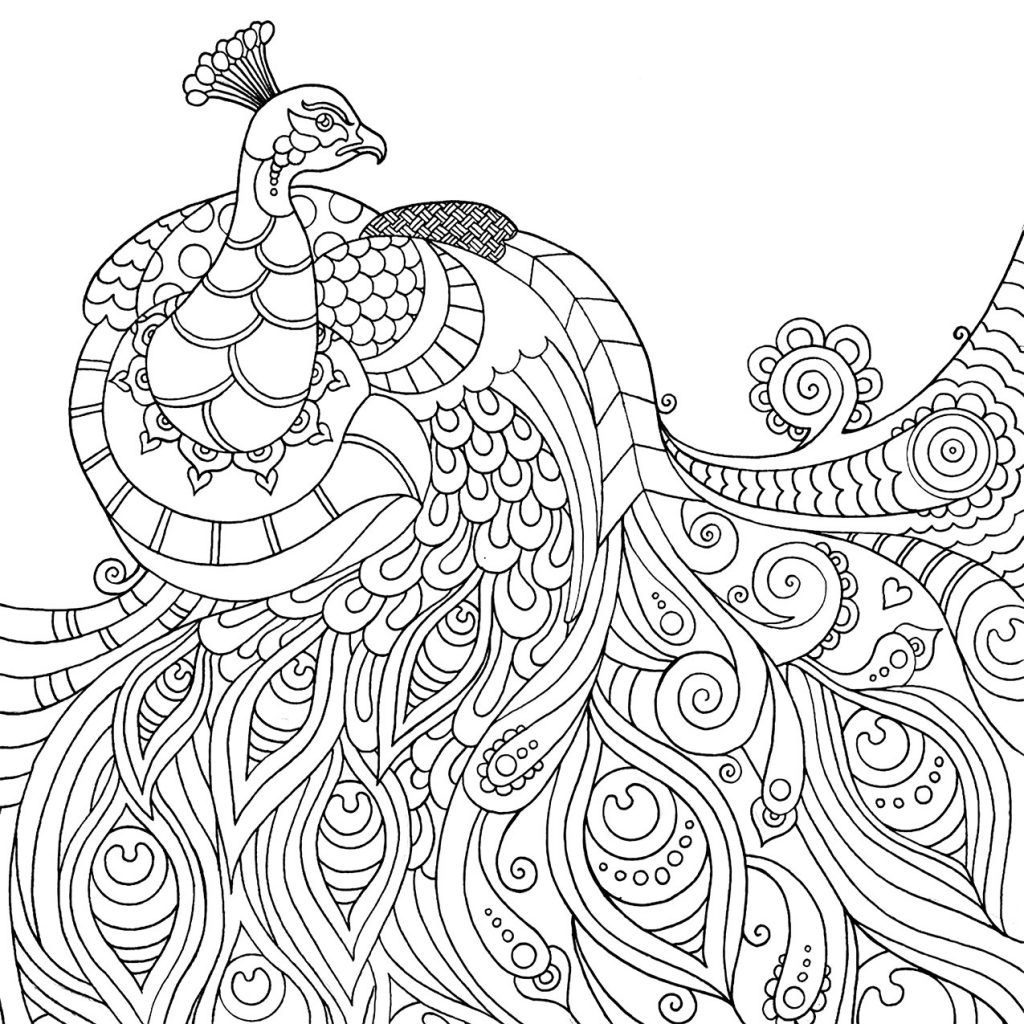 mindfulness coloring pages peacock coloring pages