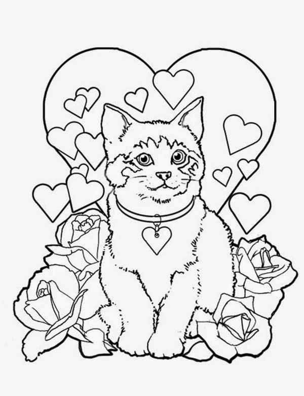 navishta sketch sweet cute angle cats