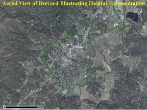 topo map of brevard