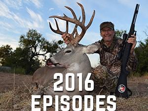 2016 Episodes