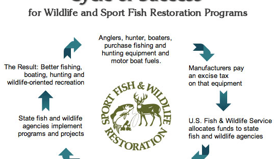 Participation in hunting sports is dwindling at an alarming rate! Here's what you can do to help. 1