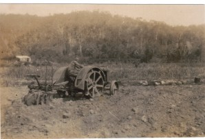 PLoughing the fields at Conway 1930-40