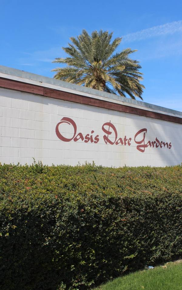 Oasis Date Farm