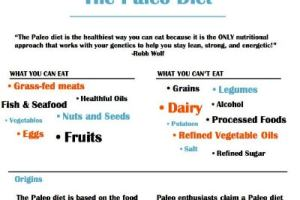 FinalPaleoInfographicFeatured