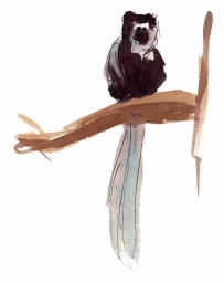 Monkey watercolor and gesture