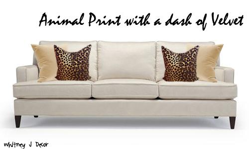 Animal Print with a dash of Velvet
