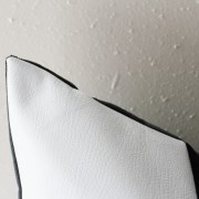 black and white velvet pillow