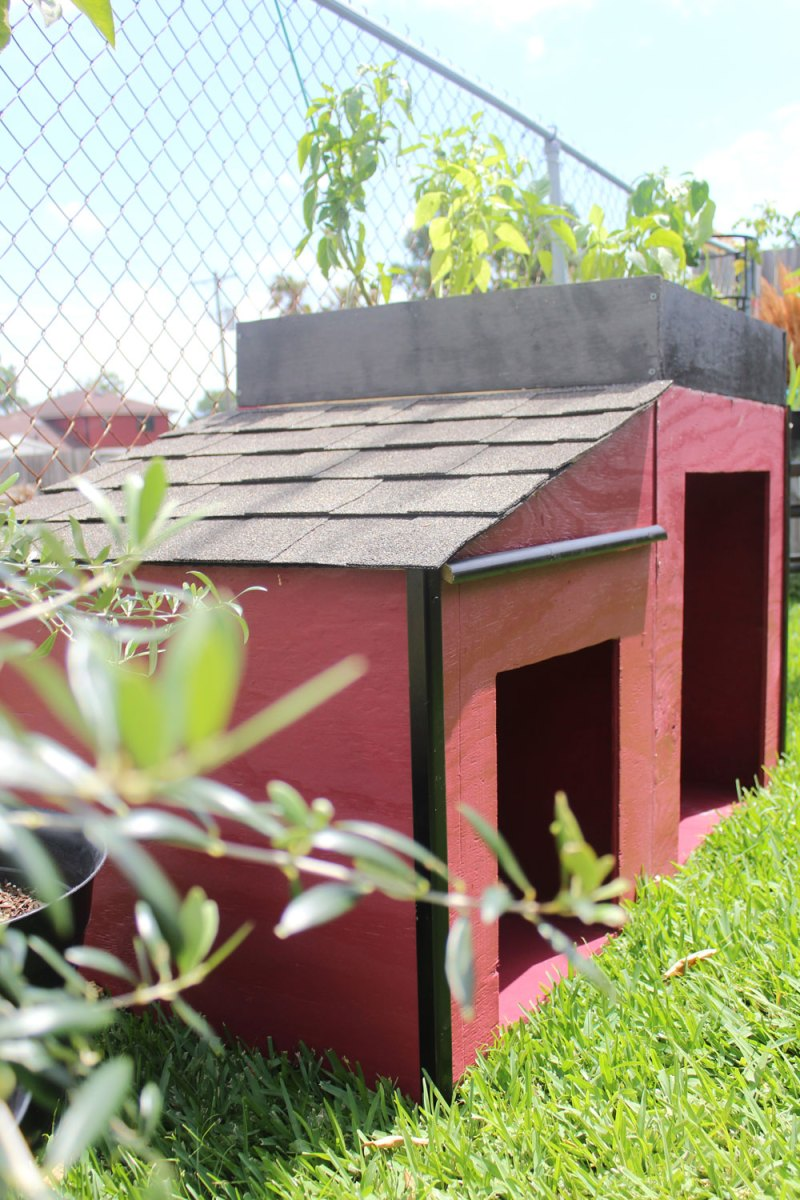 roofing a dog house | whitney J Decor blog | dog house diy | raised bed garden diy | garden and dog house | garden near a dog house