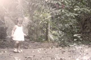 aramiez_fairy_dsc0115_fairy6