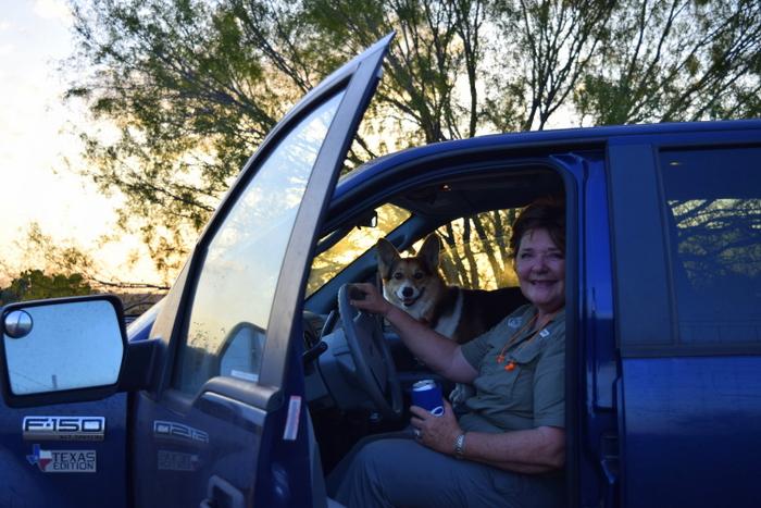 corgi in truck
