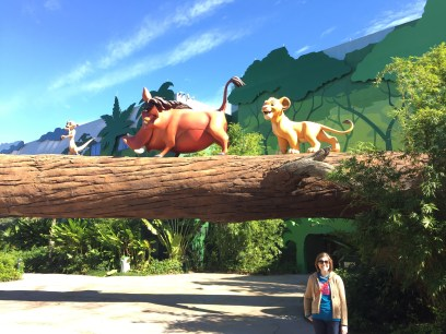 The Lion King themed area