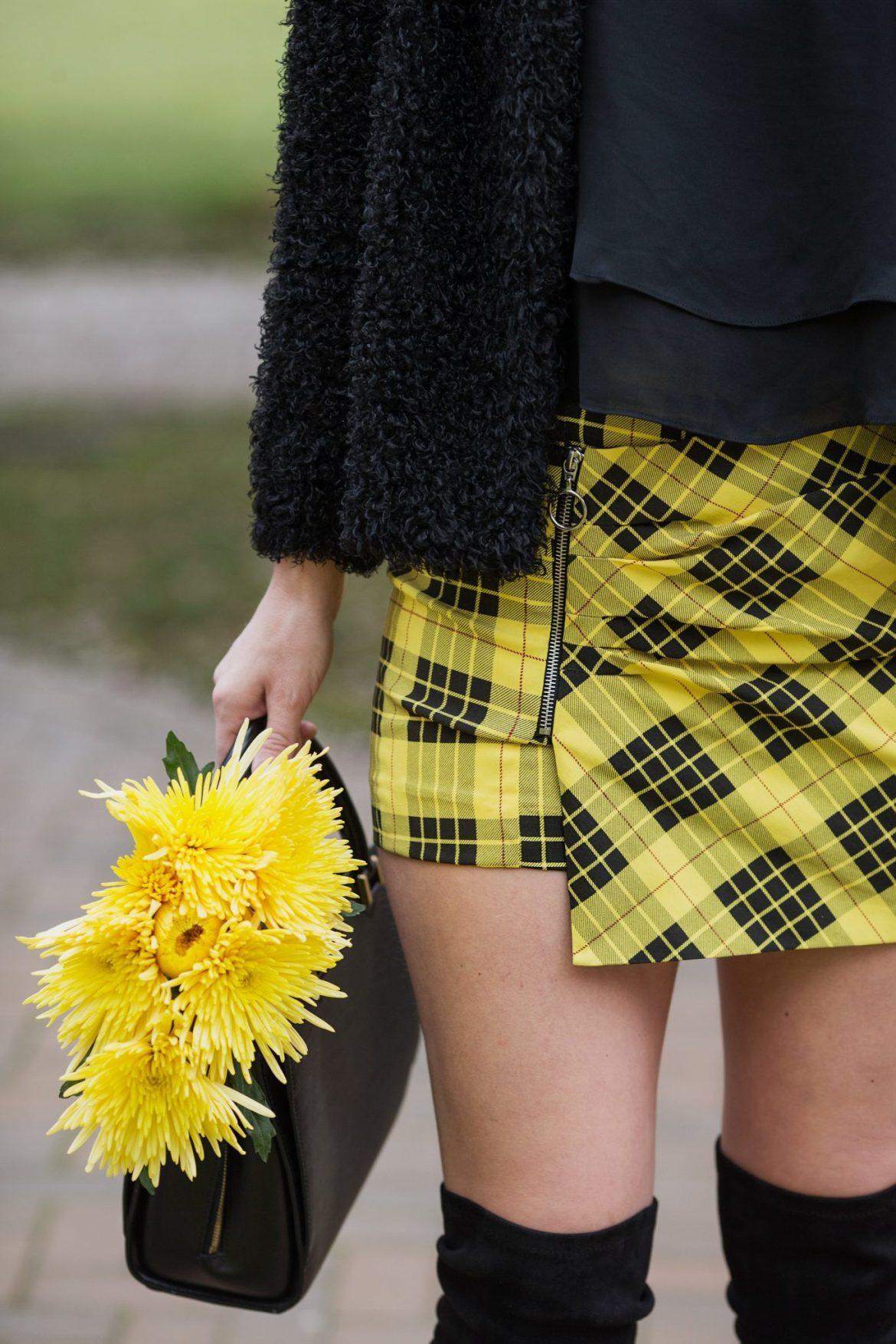tartan clueless skirt