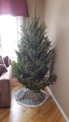 Naked Carlos Christmas Tree