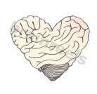 An illustration of a brain in the shape of a heart.