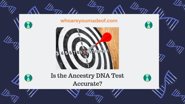 Is the Ancestry DNA Test Accurate_