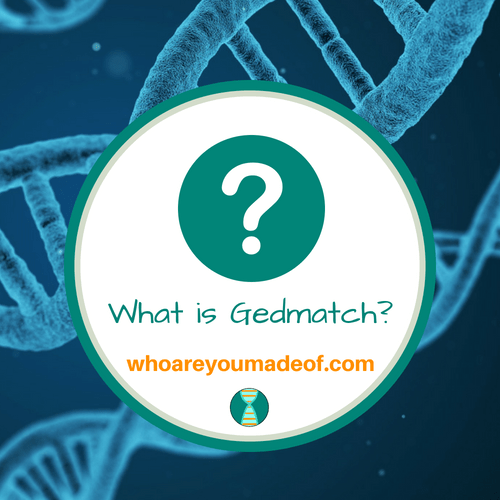What is Gedmatch?