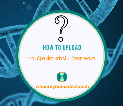 How to do a Gedmatch Genesis Upload