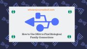 How to Use DNA to Find Biological Family Connections
