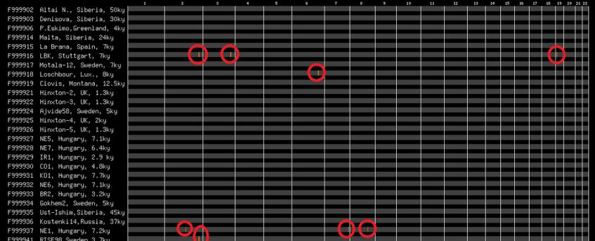 Legitimate DNA segment matches on archaic kits gedmatch