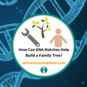 How Can DNA Matches Help Build a Family Tree?